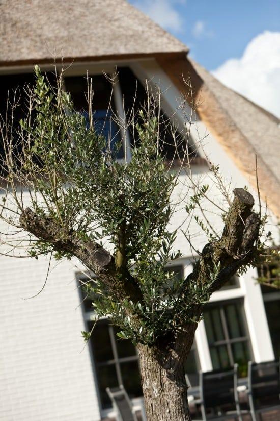 7. Rietgedekt huis bouwen villa in Almelo