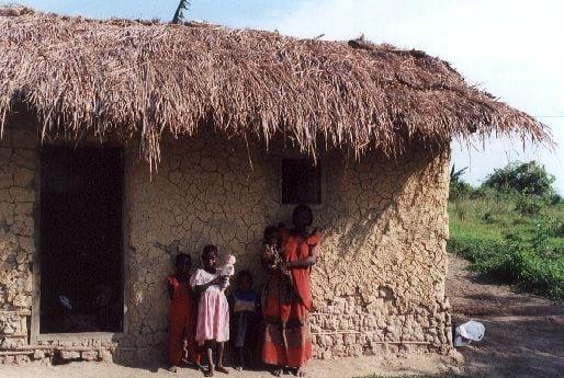 Een rietgedekt huis bouwen - armoe of luxe